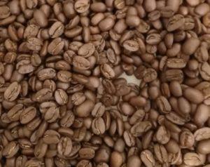 グァテマラ パカマラ豆