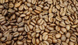 タンザニア 豆